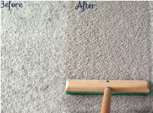 steam compariosn on carpet clean